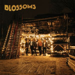 Blossoms - CMS Source